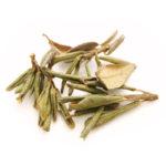 Саган-дайля чай (Рододендрон Адамса)